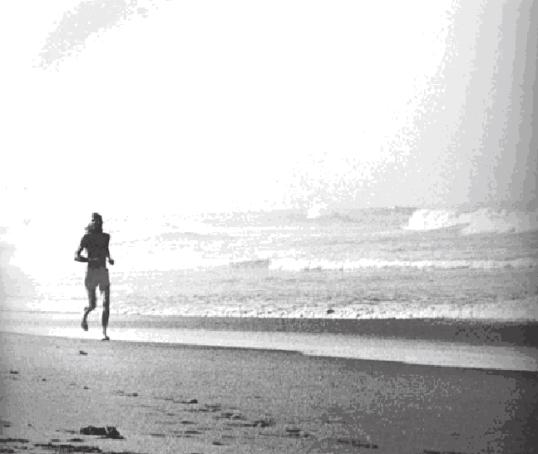 zen de correr, 17