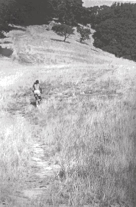 zen de correr, 21