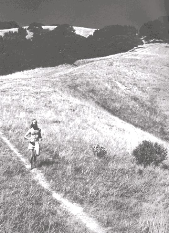 zen de correr, 28