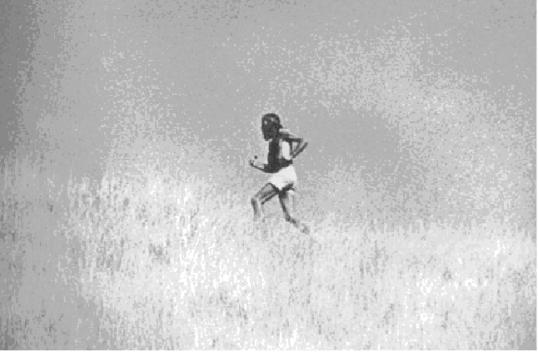 zen de correr, 3