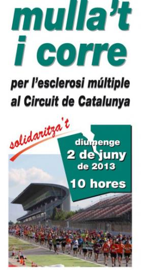cursa mullat 2013, cabecera